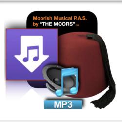 MP3 ART